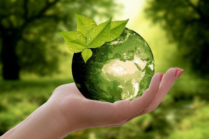 pacto verde