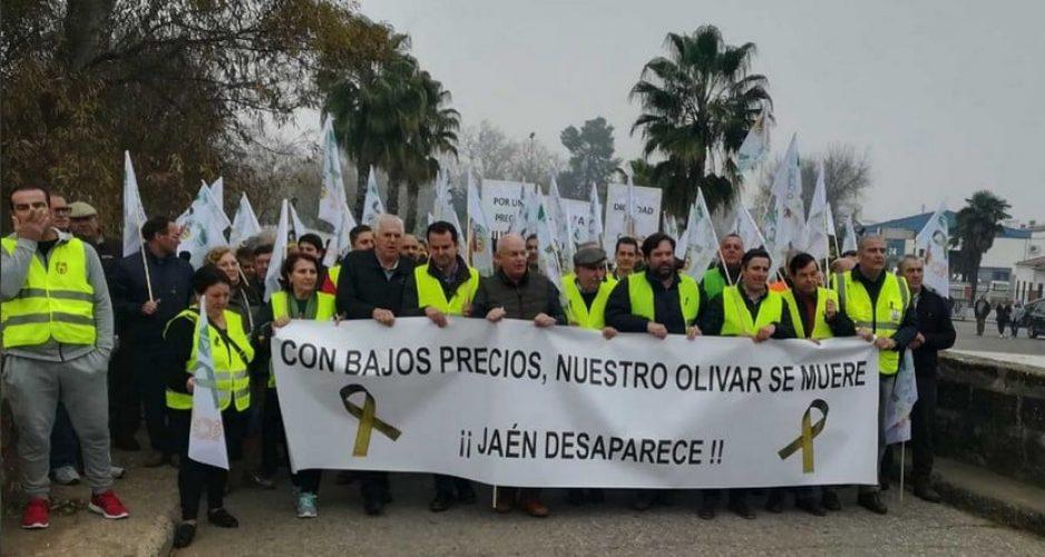 jaen-protestas-30-enero